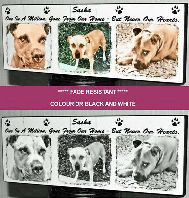 Personalised Remembrance Plaque Photo Pet Dog Cat Love Friend Memorial Wood Sign