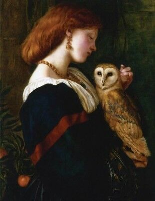 Victorian Trading Co The Owl & Woman Unframed Print 16.5x24.5 Valentine Cameron