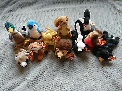 bd6c177f9d2 Lot of 11 Ty Beanie Babies Assorted Wild Forest Animals with Hang Tags PNW  1990s