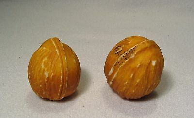 Vintage Pair Of Stone Fruit Walnuts**as Found**wow!!