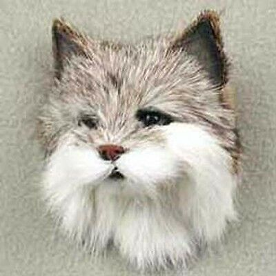 COOL CAT FUR MAGNET.. MINIATURE THROPHY:-)   COLLECT ANIMAL MAGNETS! Bid now!