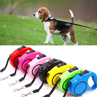 Pet Dog Cat Puppy Automatic Retractable Traction Rope Walking Lead Leash 5M 3M #