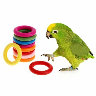 10Pcs Wooden Ring Parrot Toys Bite Chew Play Natural Colorful Rings Birds Toy