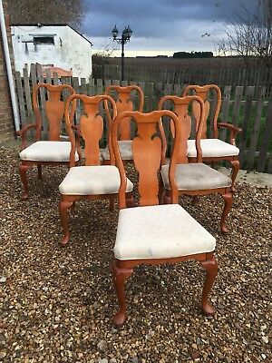 edwardian Style Reproduction Set Of 6 Chairs , 6 Chairs
