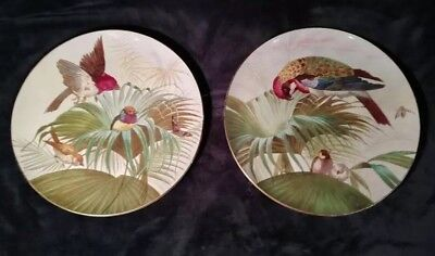 "Pair of Antique Hand Painted Wall Plates with Birds Signed ""H Goodall 1890"""