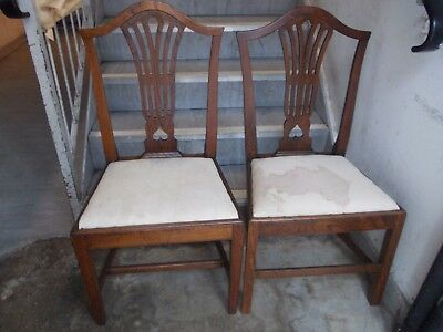 Antique Pair Georgian Oak Chair Chairs Hepplewhite Chippendale Camel Back C1790