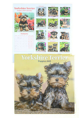 Yorkshire Terrier Yorkie Puppies Puppy Breed of Dog 2019 Mini Wall Calendar