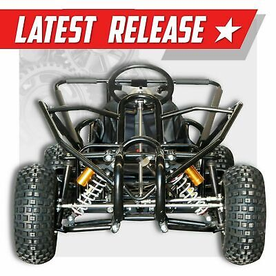 270cc Ultimate Off road go kart  ✶ FA-270XH ✶ Extreme adult kids Dune buggy 11HP