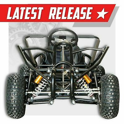 390cc ✶ Ultimate Off road go kart  ✶ FAE390XH ✶ Extreme adult size Dune buggy