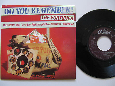 """The Fortunes Here Comes That Rainy Day Feeling Again 7"""""""