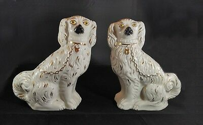 Pair Genuine Antique 19th Century Staffordshire Spaniel Dogs - Amazing Condition