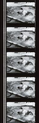 Laurel and Hardy Towed in a Hole 35mm Film Cell strip very Rare d13