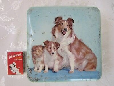 Vintage Nestle's Chocolate Tin Collie Dogs