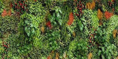 Tropical Leave Photo Backdrop Room Decoration Photography Background 20x10ft