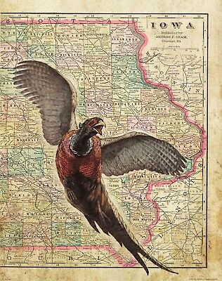 Pheasant Hunting Vintage Iowa State Map Art Print Forever Banquet Wall Decor
