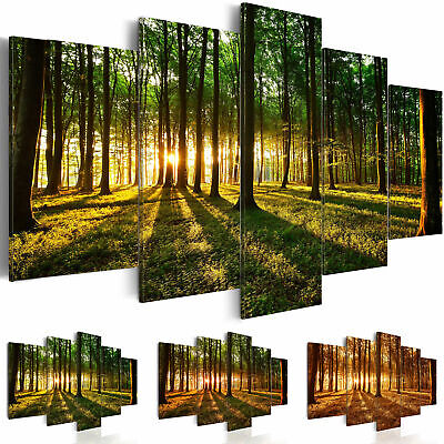 Non-woven Canvas Print Forest Nature Framed Wall Art Picture Photo Image b-B-002