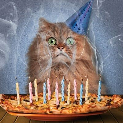 Cat Birthday Card Pizza Cake & Candles Funny Cat in Party Hat Greeting Card NEW