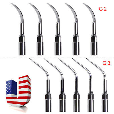 USA 10 x Dental Ultrasonic Scaler Tips For EMS WOODPECKER CE G2+G3