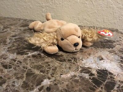 TY Beanie Baby Babies SPUNKY Cocker Spaniel - With Tags and protector ❗️❗️❗️❗️❗️