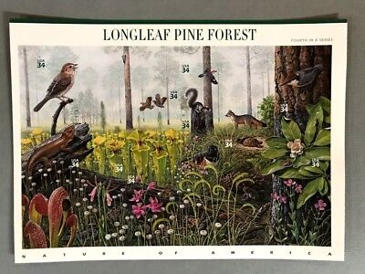2002 Longleaf Pine Forest Nature of America #4 MNH 34¢ Sc#3611 FREE Shipping