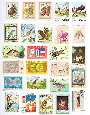 CARIBBEAN   Album page of Mint/Used Stamps (M529)