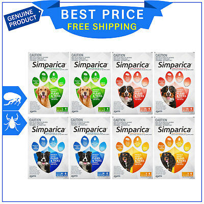 SIMPARICA for Dogs All Sizes 12 Chews Flea and Tick Treatment by Zoetis