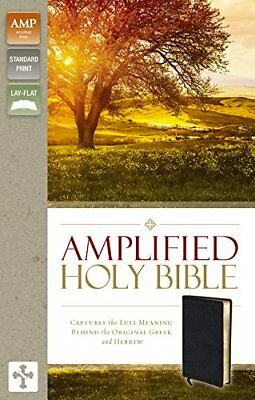 AMP Amplified Bible Bonded Leather Black