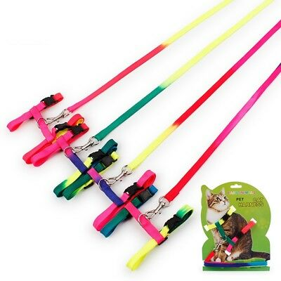 Multi-color Cat Kitten Pet Adjustable Harness Lead Leash Collar Belt Safety Rope