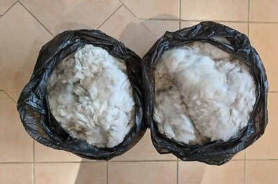 Alpaca Huacaya Fleece Natural Fibre Yarn Spinning Weaving - 2.2 kg  - White