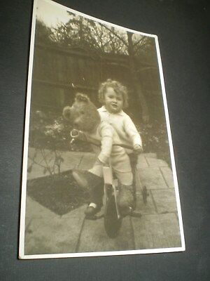 social history 1930's boy on tricycle with teddy bear toy photo postcard
