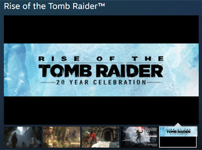 PC Rise Of The Tomb Raider 20Year Celebration STEAM OFFLINE BTC DISOUNT