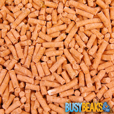 BusyBeaks Berry Suet Pellets - High Quality Feed Wild Garden Bird Food