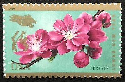 2019 Scott #5340 - Forever - LUNAR NEW YEAR OF THE BOAR - Single Mint NH