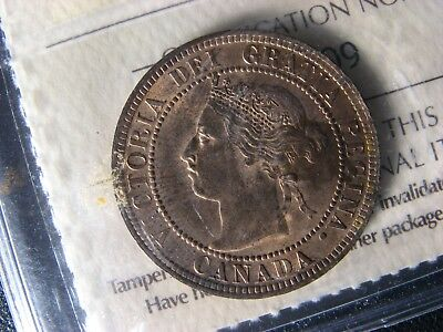 1 cent 1901 Canada ICCS MS-63 RB one penny copper coin Queen Victoria c ¢ large