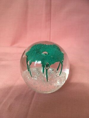 Glass Paperweight Collectible Ornament