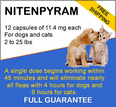 Pet&Pet-12 doses-Flea killer capsules for dogs and cats 2 - 25 lbs