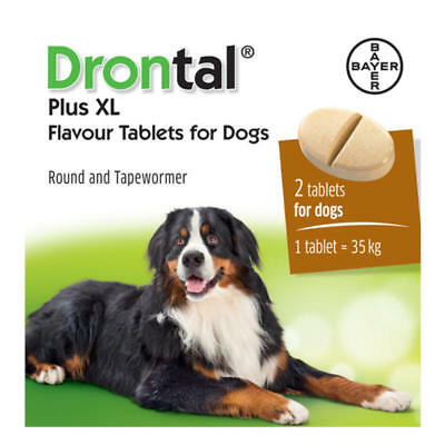 Drontal Plus XL wormer for dogs >35kg 77lbs (2 tablets) Bayer made in Germany