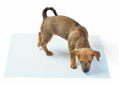 AmazonBasics Pet Training and Puppy Pads Regular & Heavy Duty 100-Ct 22x22