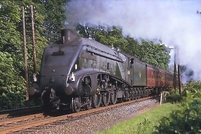 A4 Class 4-6-2 60009 UNION OF SOUTH AFRICA 6x4 Quality British Rail Photo B
