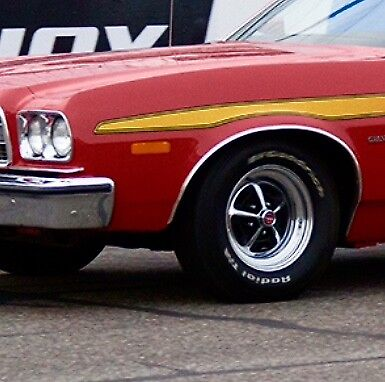 1973 Gran Torino Wheel Well Trim - DRIVER SIDE - LEFT FRONT - SHOW CONDITION