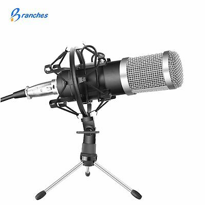 Professional Condenser Microphone Kit:Microphone For Computer+Shock Mount BM-800