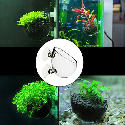 Mini Wall Mount Aquarium Fish Tank Aquatic Plant Glass Cup Pot Holder Flowery