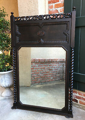 Antique French Carved Oak BARLEY TWIST Frame Trumeau Pier Wall MIRROR Jacobean