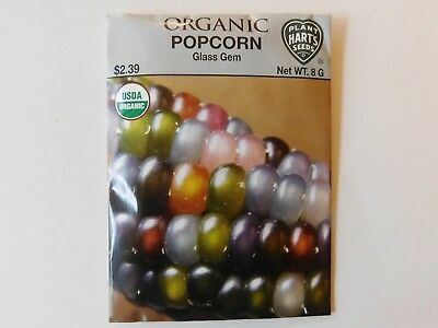 Popcorn vegetable seeds - Glass Gem, USDA Organic