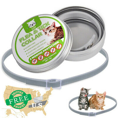 US DEWEL 33CM  Collar CATS Tick And Flea Treatment 8 Months Protection US STOCK