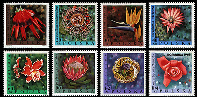 Poland 1968 : Flowers // Set of 8 stamps