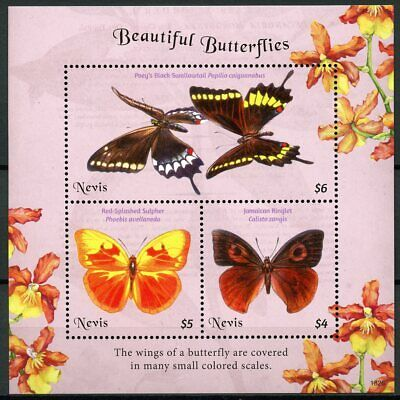 Nevis 2018 MNH Beautiful Butterflies Swallowtail Sulpher 3v M/S Butterfly Stamps