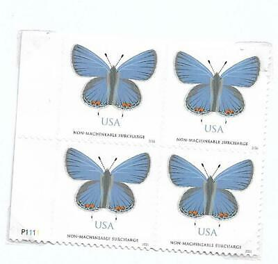 USA -  butterfly - new