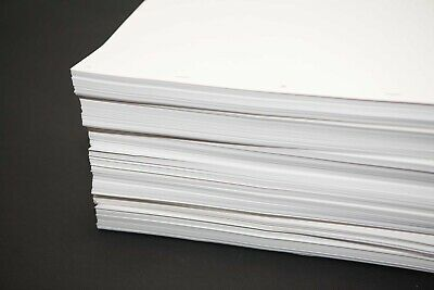 Animation Paper Bundle - 1000 punched 16filed