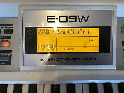 Roland E-09W white interactive arranger Piano keyboard With Soft Case